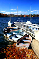 Rowboats at Dock, Jamaica Pond