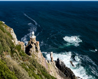 Cape of Good Hope, So. Africa
